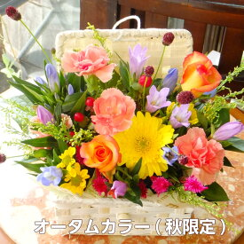 フラワーギフト 誕生日 生花 フラワーアレンジメント バスケット Mサイズ