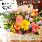 敬老の日遅れてごめんね 花 プレゼント フラワーアレンジメント フラワーギフト 生花 バスケット Mサイズ
