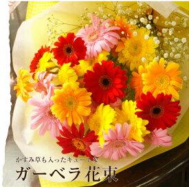 ガーベラとかすみ草の花束 記念日プレゼント 誕生日 出産祝い ピアノ・バレエ発表会 記念日 フラワーギフト