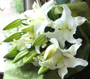 白ユリの花束 純白5本 25輪 豪華ユリ 退職 プレゼント 誕生日 記念日プレゼント