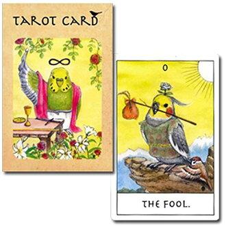 새 타로 카드