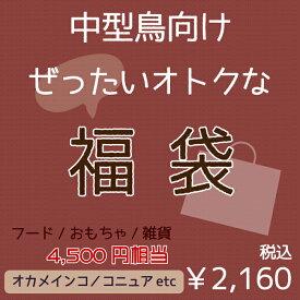 【福袋】中型鳥セット