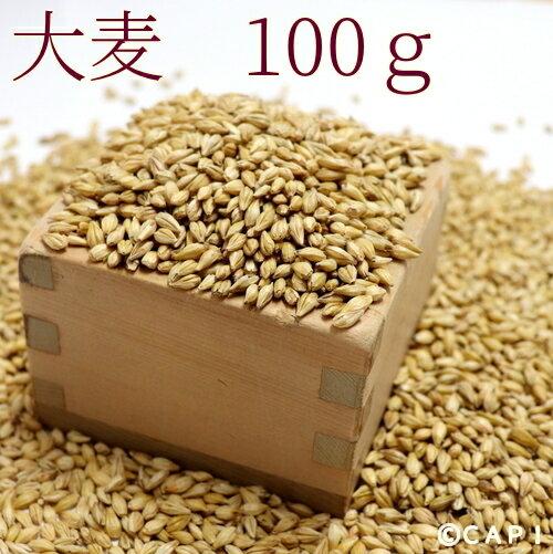 【国産】大麦 100g