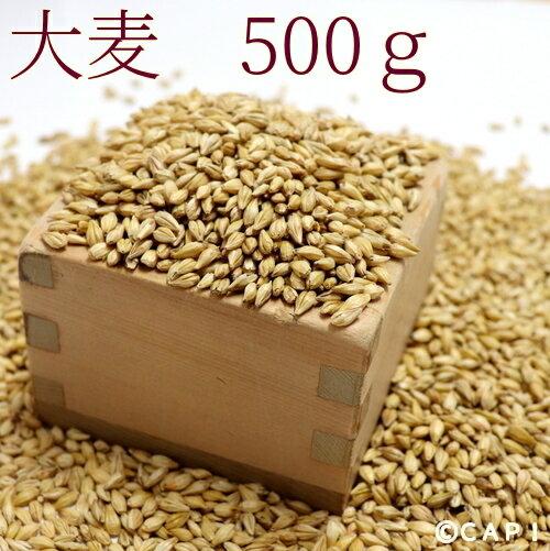 【国産】大麦 500g