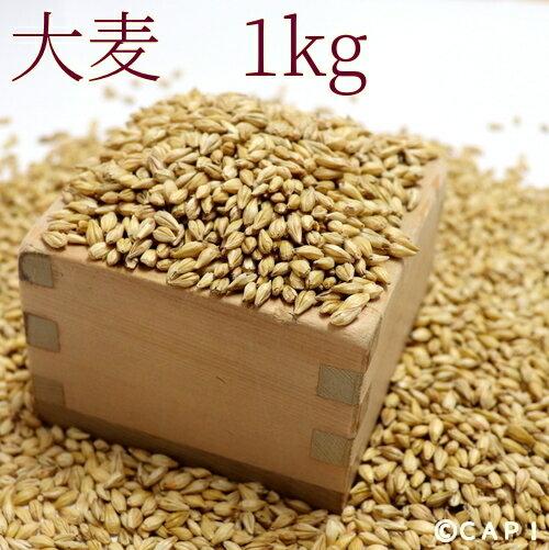 【国産】大麦 1kg