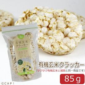 賞味期限2021/3/18【尾田川農園】有機玄米クラッカー 85g