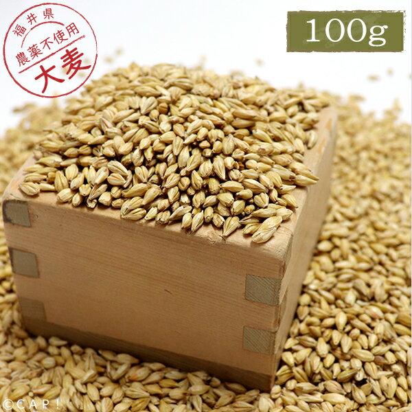 【国内産】大麦 100g