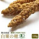 【熊本県産】有機JAS認定品 白粟の穂 100g 2018年産 ※緑ラベル※