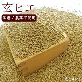 【国内産/農薬不使用】玄ヒエ 200g