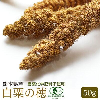 【熊本県産】有機JAS認定品白粟の穂50g2018年産※茶ラベル※