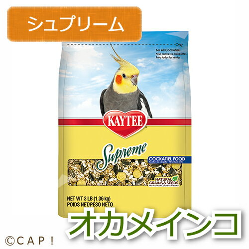 賞味期限:2019/3/8【ケイティー】シュプリーム オカメインコ 3#(1.36kg)