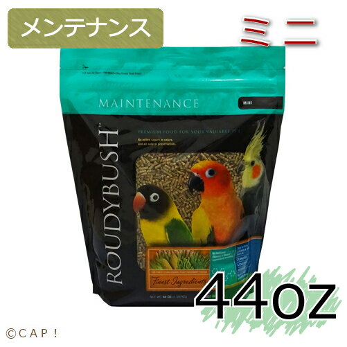 賞味期限:2020/5/4【ラウディブッシュ】デイリーメンテナンスミニ 44oz(1.25kg)