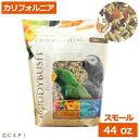 賞味期限:2020/5/4ラウディブッシュ カリフォルニアブレンドスモール 44oz(1.25kg)