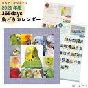 【2021年版】365days 鳥どりカレンダー
