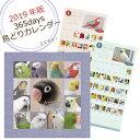 【2019年版】365days 鳥どりカレンダー