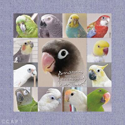 【2019年版】365days鳥どりカレンダー