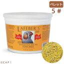 【大容量】賞味期限2022/9/17 ラフィーバープレミアムデイリーダイエット フィンチ5#(2.26kg)