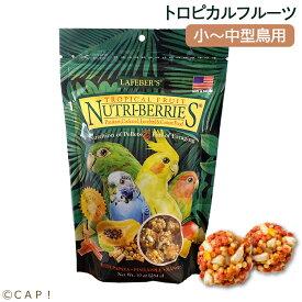 賞味期限2021/10/6 ラフィーバー トロピカルフルーツ オカメインコ (10oz/284g)