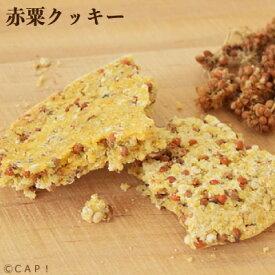 賞味期限2021/3/31 Sunny Kitchen 赤粟クッキー 20g