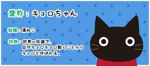 缶バッジ〜黒ねこキョロちゃん(青)【HIKOSENCARA】【缶バッジ】【クロ】【ねこ】【ネコ】【猫雑貨】【メール便○】SZJ16-018