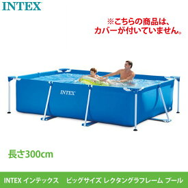【あす楽】送料無料【カバー無し】【INTEX インテックス】フレームプール #539731 ファミリーサイズ 300×200×75cm 300 大型 大人