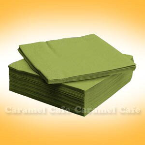 【IKEAイケア】 FANTASTISKナプキン(40×40cm) ミディアムグリーン 50ピース