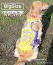 ●バスケタンク●大型犬服 大型犬 中型犬 犬服 バスケット ウェア 代表 ブルス ラブラドール ゴールデン ユニフォー…