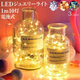 ジュエリーライト 1m 10灯 電池式 全3色 led クリスマスツリー 飾り付け インテリア FW-LED1M メール便(定形外郵便)送料無料