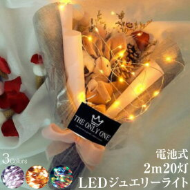 ジュエリーライト 2m 20灯 電池式 全3色 FW-LED2M メール便(定形外郵便)送料無料