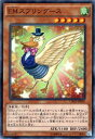 Cros-jp005-n