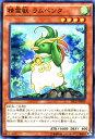 Sece jp029 n