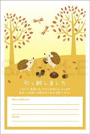 引越はがきポストカード 4枚入(郵便はがき)秋のどんぐりとハリネズミ 72229