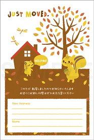 引越はがきポストカード 4枚入(郵便はがき)秋景色のリス 72234