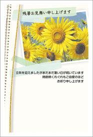 残暑見舞い はがき ポストカード 4枚入(郵便はがき)ひまわりのアルバム 75181