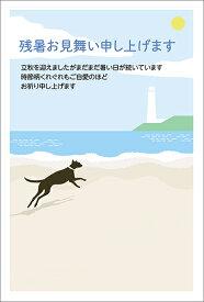 残暑見舞い はがき ポストカード 4枚入(郵便はがき)砂浜を走る犬 75237