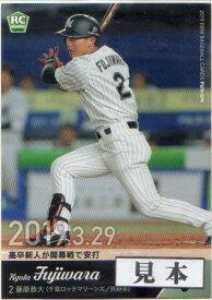 BBM2019 ベースボールカード FUSION 始球式・タイトルホルダーカード