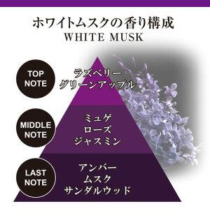 芳香剤車ブラング(BLANG)カーメイトG631ブラングブースターホワイトムスク芳香剤ムスク車芳香剤