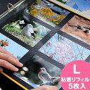 アルバム 粘着台紙 リフィル【粘着L】 PDフォトアルバム DELFONICS デルフォニクス 楽天 224536