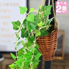 選べる 2個セット フェイクグリーン 光触媒 壁掛け ハンギング 観葉植物 フェイク アイビー 消臭 抗菌 ポトス イミテーショングリーン クレマチス グリーン 人工観葉植物 人工 造花 おしゃれ インテリア