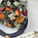 ドライフラワー スワッグ ベルフルール ミニョン ドゥ 【ヘリクリサム】 花束 BELLES FLEURS MIGNON DUE スワッグ ギ…