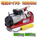 電動 ホイスト 1200 kg 家庭用 電源 100V ホイスト 電動ウインチ ホイスト 1.2 t 操作簡単 吊り上げ クレーン リモコ…