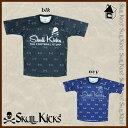Sk14aw011 01