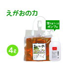 植物油由来成分からできたボタニカル多用途洗剤「えがおの力(旧松の力)」4L濃縮/ エコロジー泡ボトル350mlセット