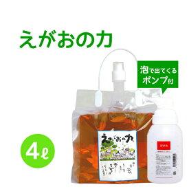 「えがおの力(旧松の力)」4L濃縮/ エコロジー泡ボトル350mlセット 植物油由来成分からできたボタニカル多用途洗剤