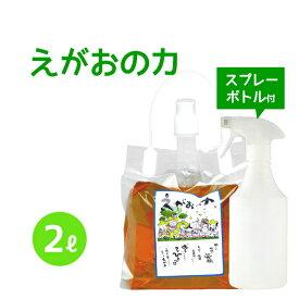 植物油由来成分からできたボタニカル多用途洗剤「えがおの力(旧松の力)」2L濃縮/ 半透明スプレーボトル500mlセット