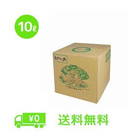 「えがおの力(旧松の力)」10L 【お徳用】 植物油由来成分からできた濃縮自然派洗剤