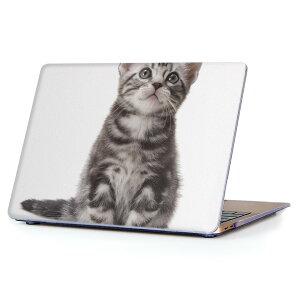 MacBook Air 13inch 2018 専用 デザインハードケース A1932 Apple マックブック エア ノートパソコン カバー ケース ハードカバー クリア 透明 アクセサリー 保護 001070 猫 アメリカンショートヘア