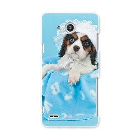 LGV33 Qua phone PX キュア フォン px lgv33 au エーユー スマホ カバー ケース スマホケース スマホカバー PC ハードケース 写真 水色 青 ブルー 犬 アニマル 008499