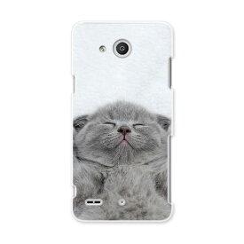 LGV33 Qua phone PX キュア フォン px lgv33 au エーユー スマホ カバー ケース スマホケース スマホカバー PC ハードケース 猫 動物 写真 011682