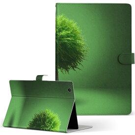 creative ZiiO10 ZiiO 10 creative クリエティブ その他1 タブレット ziio10 LLサイズ 手帳型 タブレットケース カバー フリップ ダイアリー 二つ折り 革 写真・風景 植物 緑 グリーン 006285